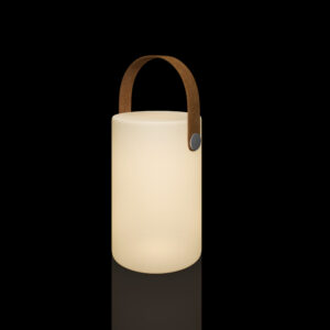 portable luminaire lamps